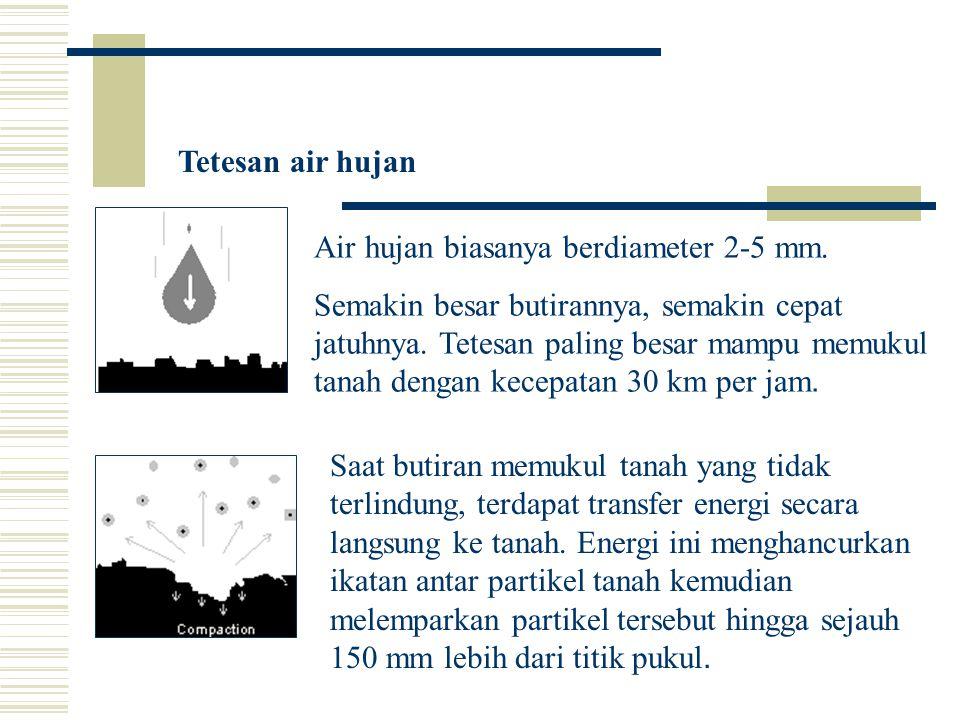 Tetesan air hujan Air hujan biasanya berdiameter 2-5 mm.