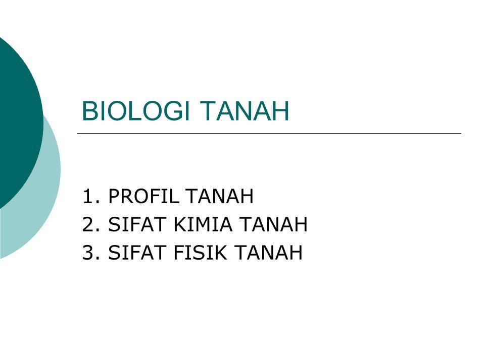 1. PROFIL TANAH 2. SIFAT KIMIA TANAH 3. SIFAT FISIK TANAH