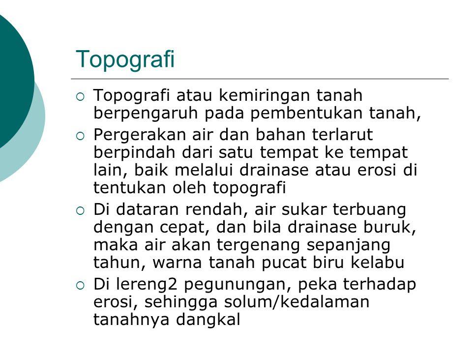 Topografi Topografi atau kemiringan tanah berpengaruh pada pembentukan tanah,