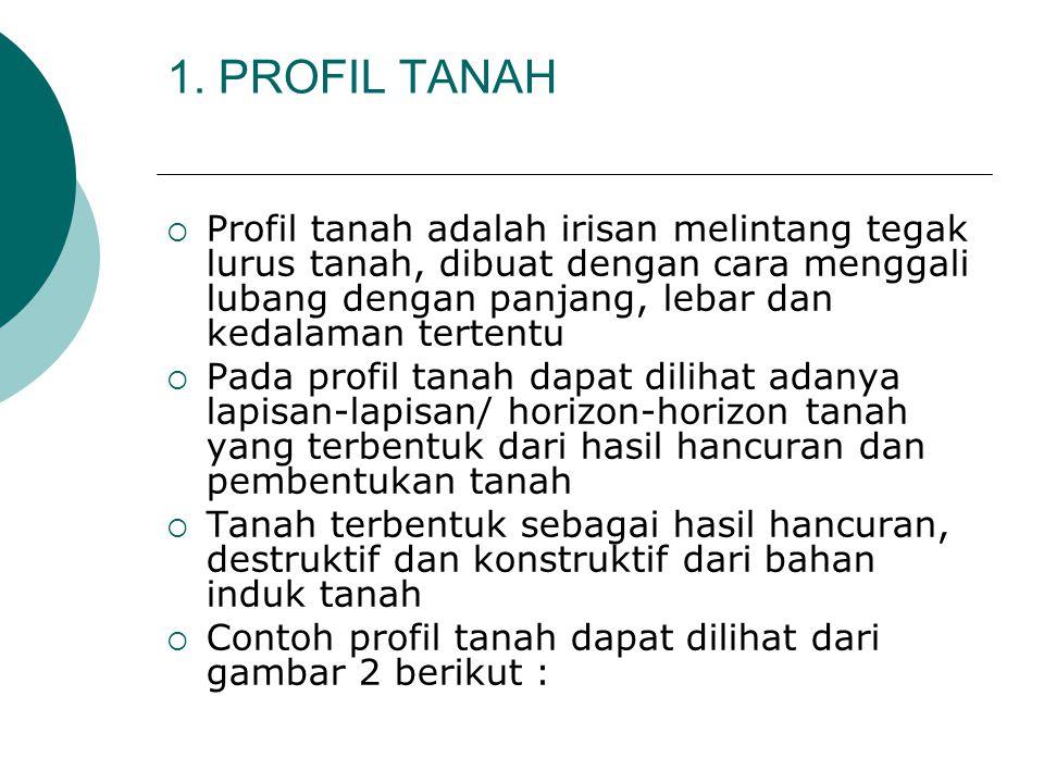 1. PROFIL TANAH