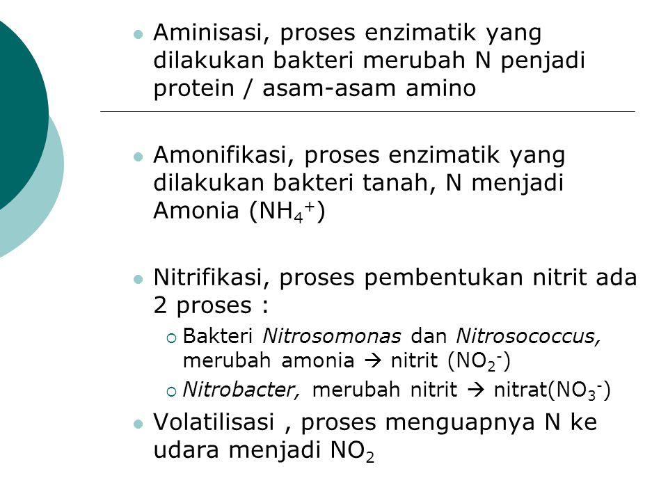 Nitrifikasi, proses pembentukan nitrit ada 2 proses :
