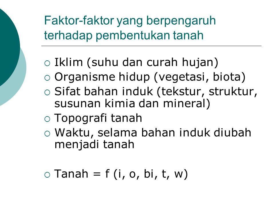 Faktor-faktor yang berpengaruh terhadap pembentukan tanah