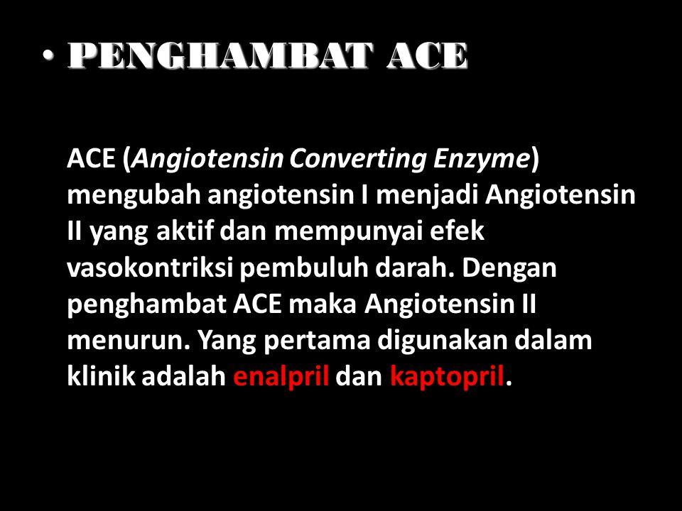 PENGHAMBAT ACE