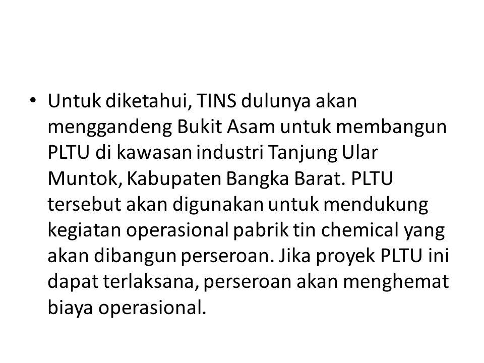 Untuk diketahui, TINS dulunya akan menggandeng Bukit Asam untuk membangun PLTU di kawasan industri Tanjung Ular Muntok, Kabupaten Bangka Barat.