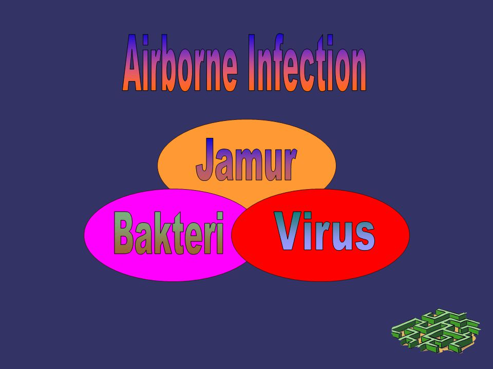 Airborne Infection Jamur Bakteri Virus