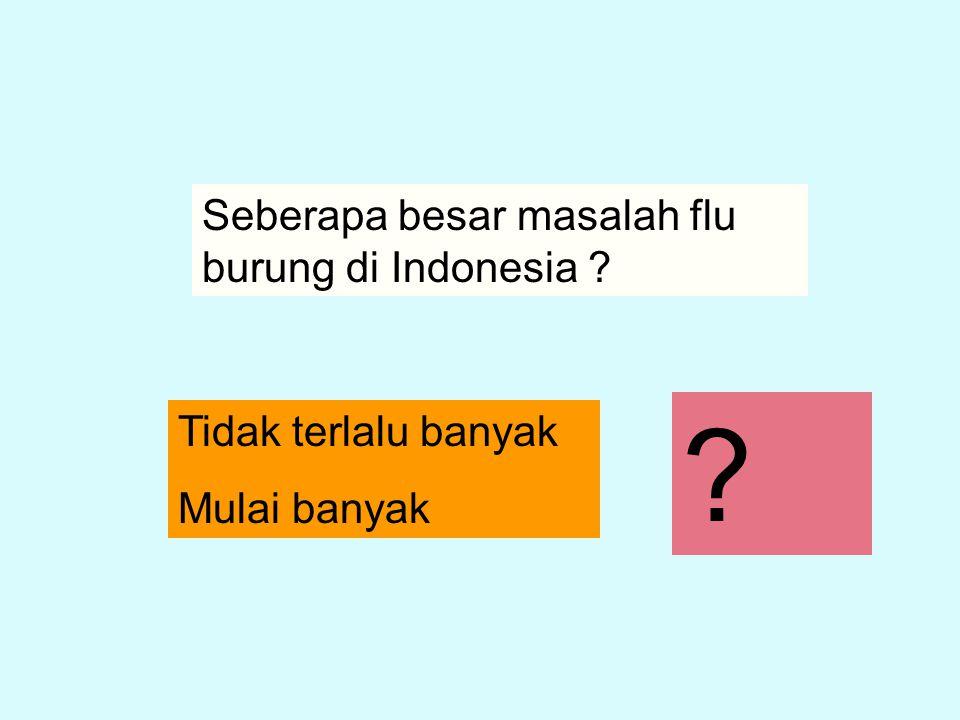 Seberapa besar masalah flu burung di Indonesia