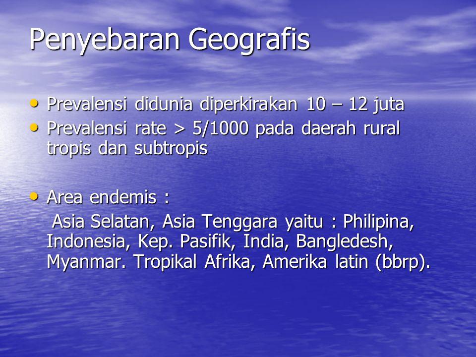 Penyebaran Geografis Prevalensi didunia diperkirakan 10 – 12 juta