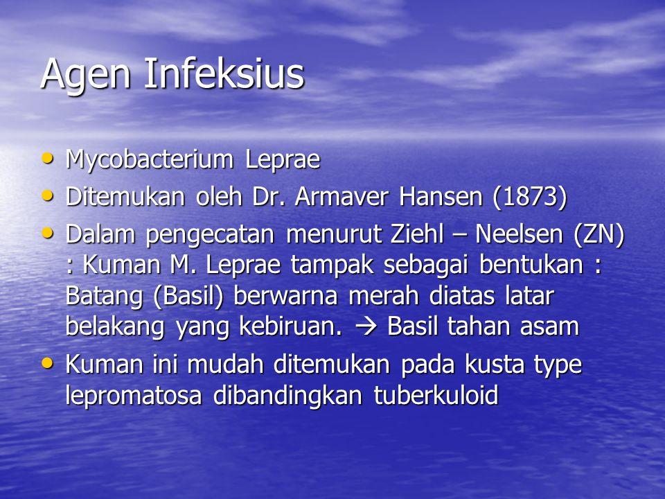 Agen Infeksius Mycobacterium Leprae