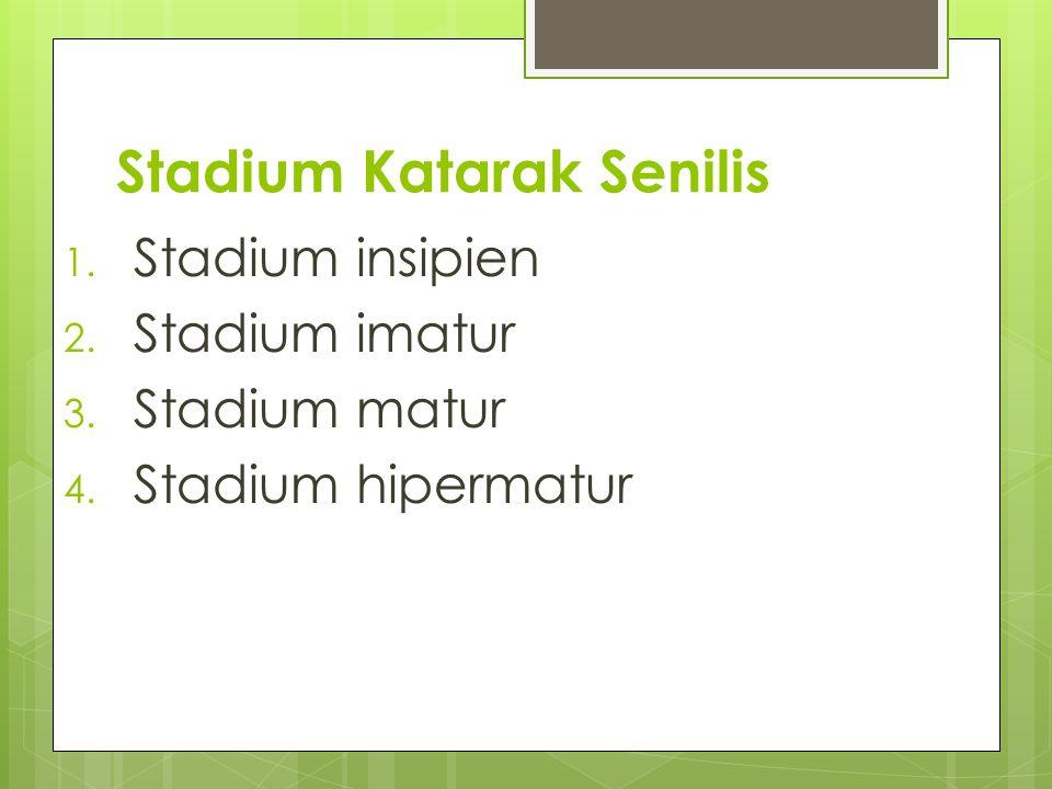 Stadium Katarak Senilis