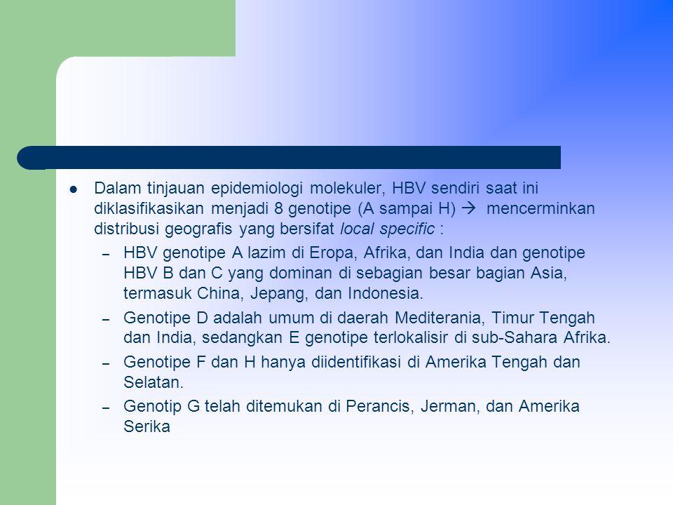 Dalam tinjauan epidemiologi molekuler, HBV sendiri saat ini diklasifikasikan menjadi 8 genotipe (A sampai H)  mencerminkan distribusi geografis yang bersifat local specific :
