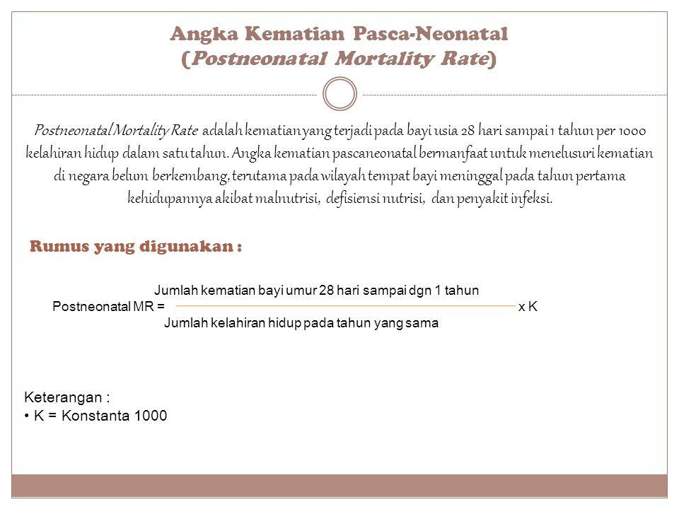 Angka Kematian Pasca-Neonatal (Postneonatal Mortality Rate)