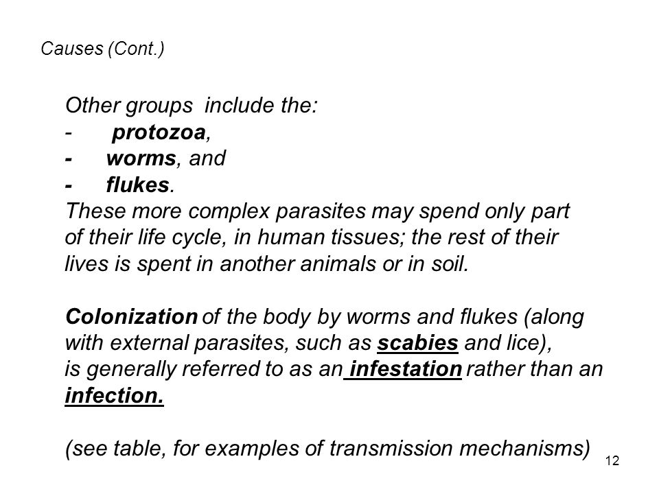 Other groups include the: - protozoa, - worms, and - flukes.