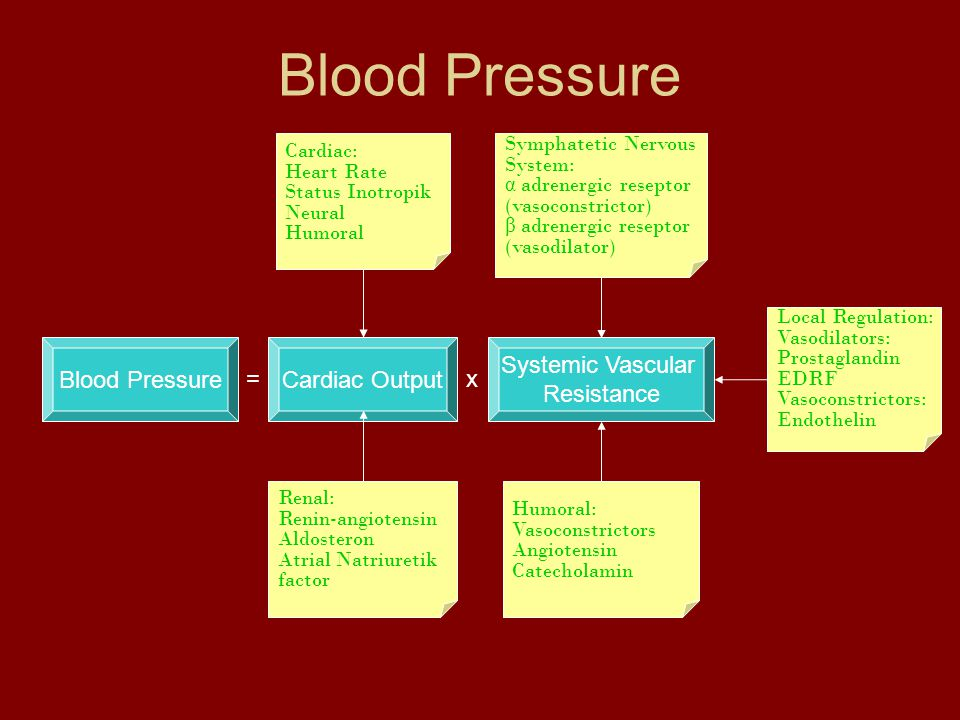 Blood Pressure Blood Pressure Cardiac Output Systemic Vascular