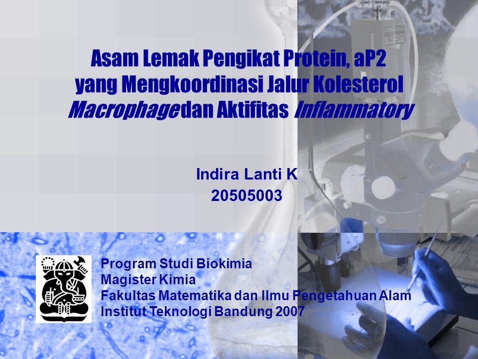 Asam Lemak Pengikat Protein, aP2 yang Mengkoordinasi Jalur Kolesterol Macrophage dan Aktifitas Inflammatory