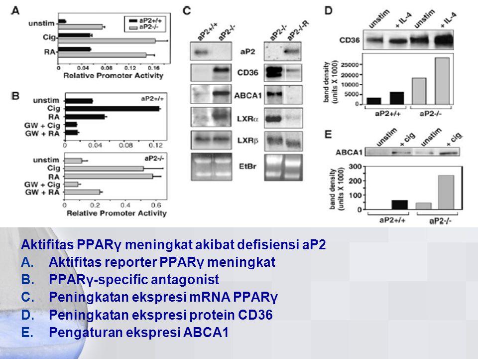 Aktifitas PPARγ meningkat akibat defisiensi aP2