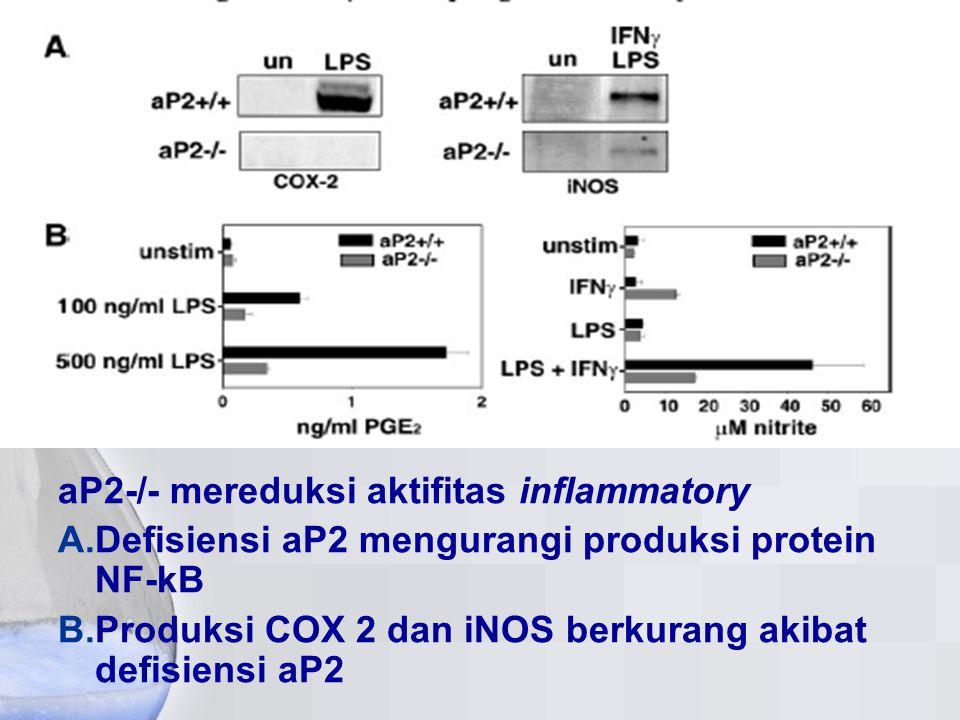 aP2-/- mereduksi aktifitas inflammatory