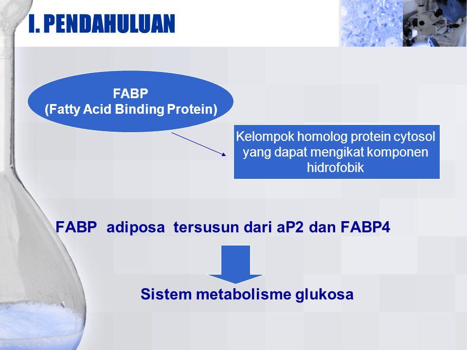Sistem metabolisme glukosa (Fatty Acid Binding Protein)