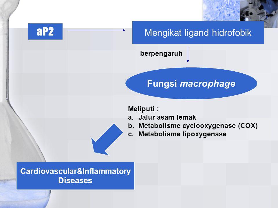 Cardiovascular&Inflammatory