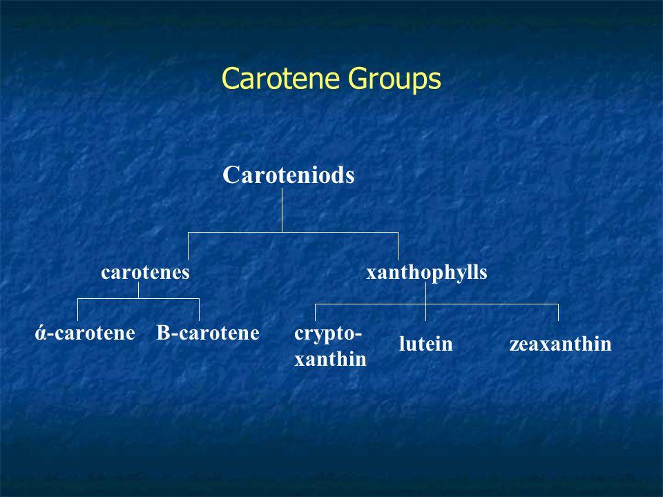 Carotene Groups Caroteniods carotenes xanthophylls ά-carotene