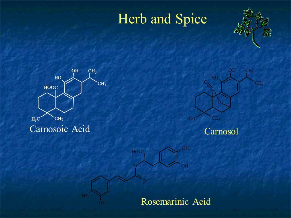 Herb and Spice Carnosoic Acid Carnosol Rosemarinic Acid C H O O H C H