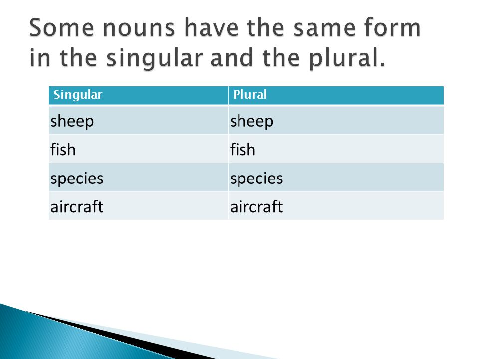 Some nouns have the same form in the singular and the plural.