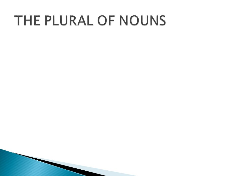 THE PLURAL OF NOUNS
