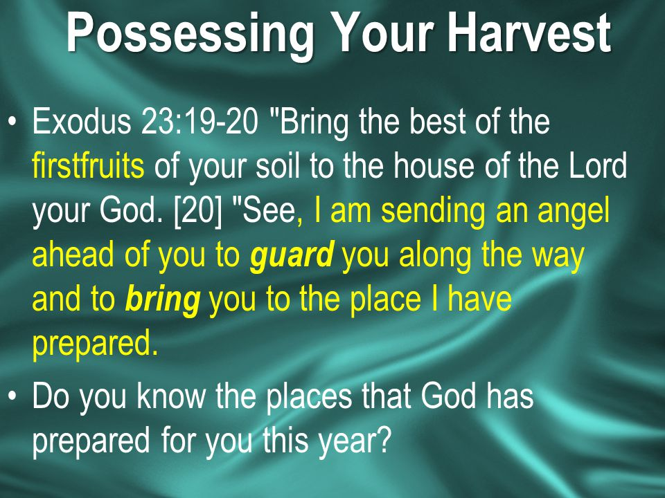 Possessing Your Harvest