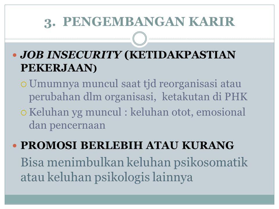 3. PENGEMBANGAN KARIR JOB INSECURITY (KETIDAKPASTIAN PEKERJAAN)
