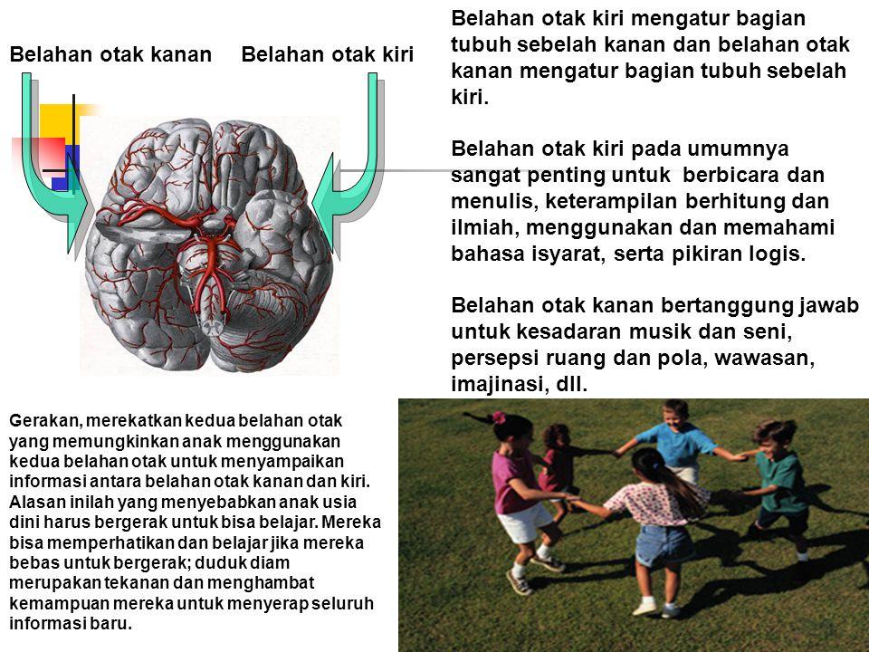 Belahan otak kiri mengatur bagian tubuh sebelah kanan dan belahan otak kanan mengatur bagian tubuh sebelah kiri.