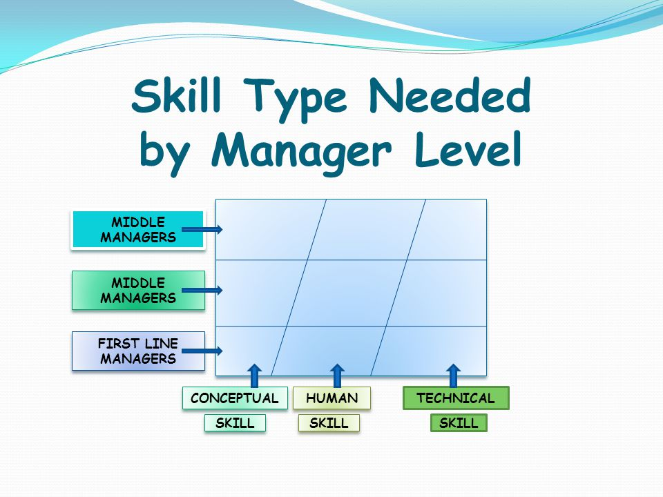 Skill Type Needed by Manager Level