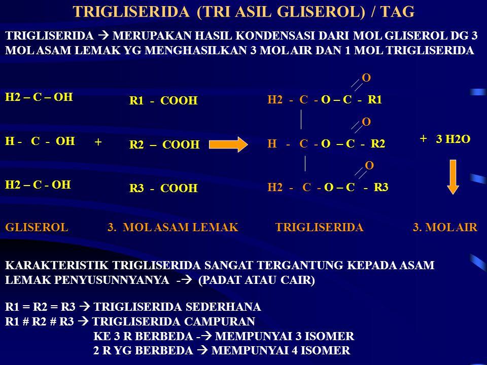 TRIGLISERIDA (TRI ASIL GLISEROL) / TAG