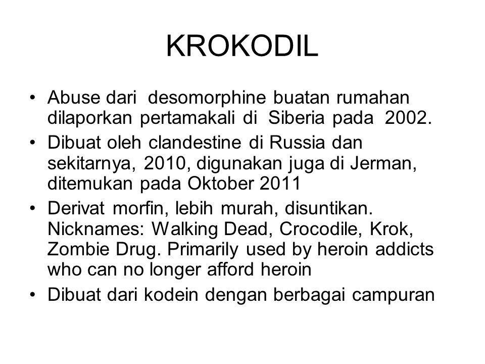 KROKODIL Abuse dari desomorphine buatan rumahan dilaporkan pertamakali di Siberia pada 2002.