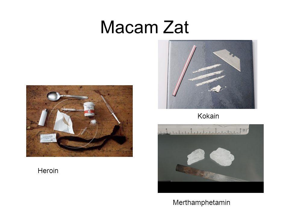 Macam Zat Kokain Heroin Merthamphetamin