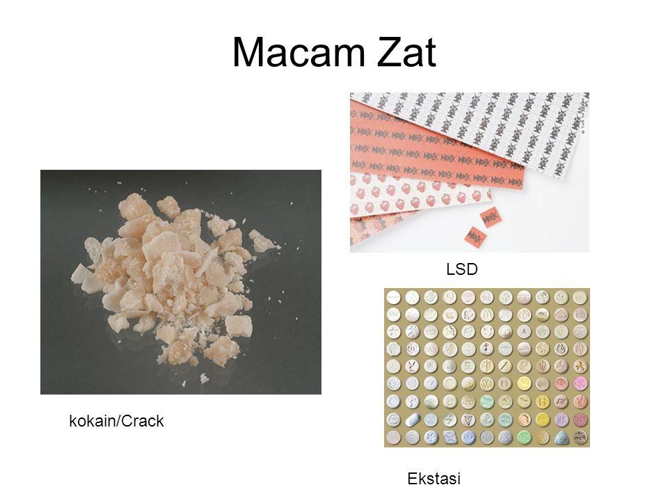 Macam Zat LSD kokain/Crack Ekstasi