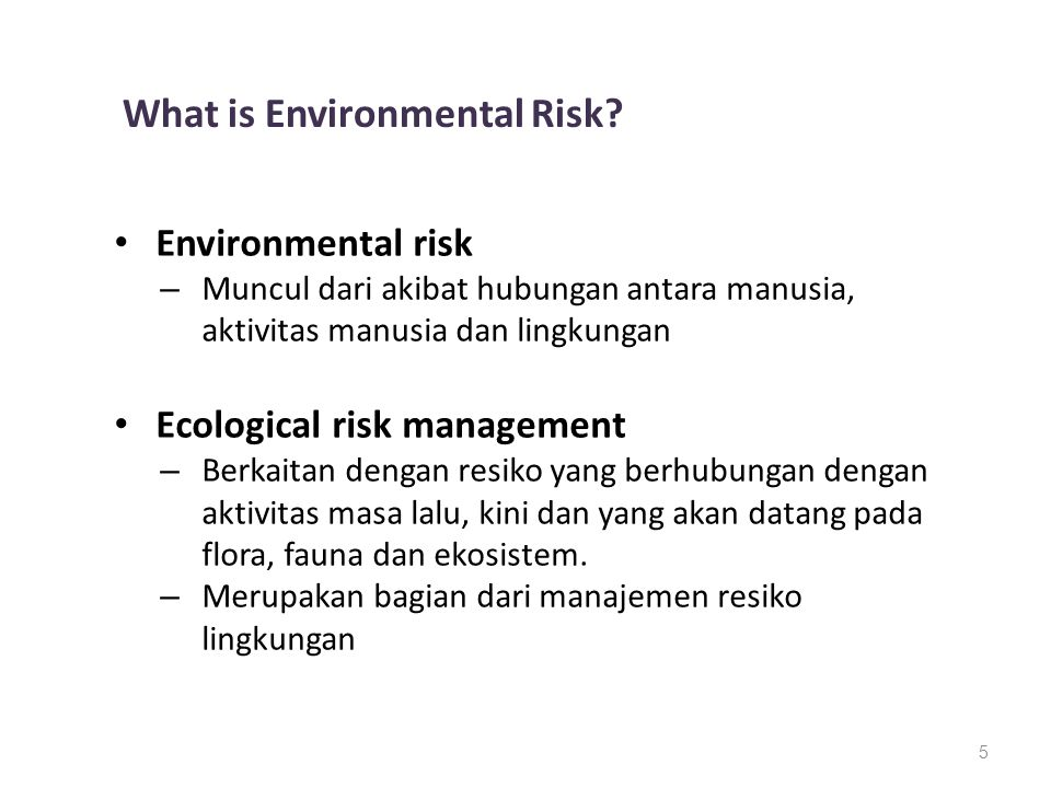 What is Environmental Risk