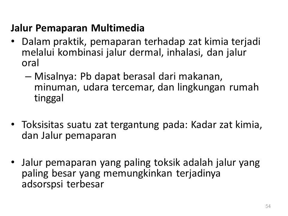 Jalur Pemaparan Multimedia