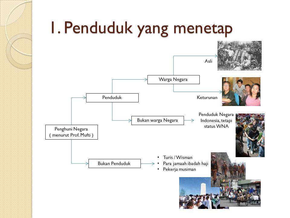 Penduduk Negara Indonesia, tetapi status WNA