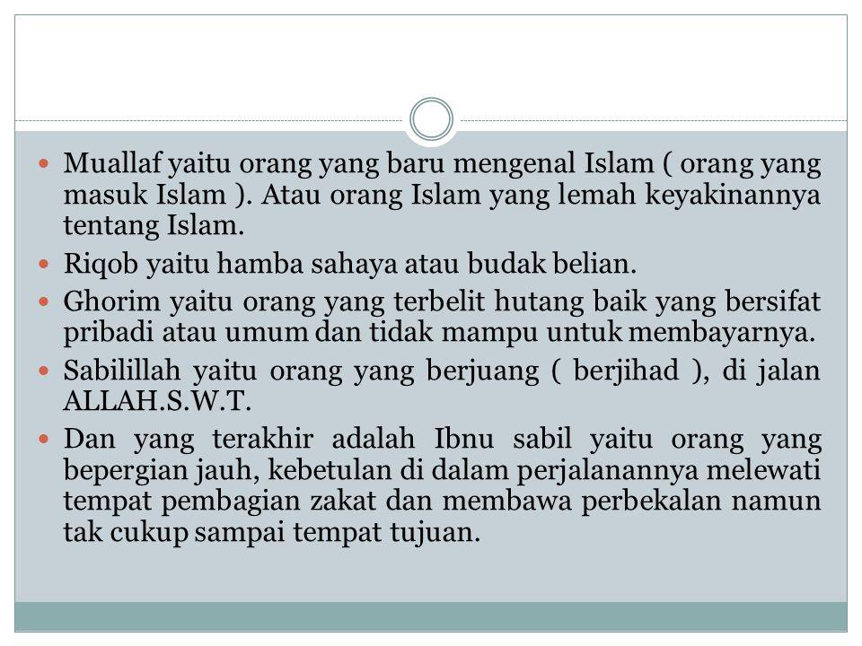 Muallaf yaitu orang yang baru mengenal Islam ( orang yang masuk Islam ). Atau orang Islam yang lemah keyakinannya tentang Islam.