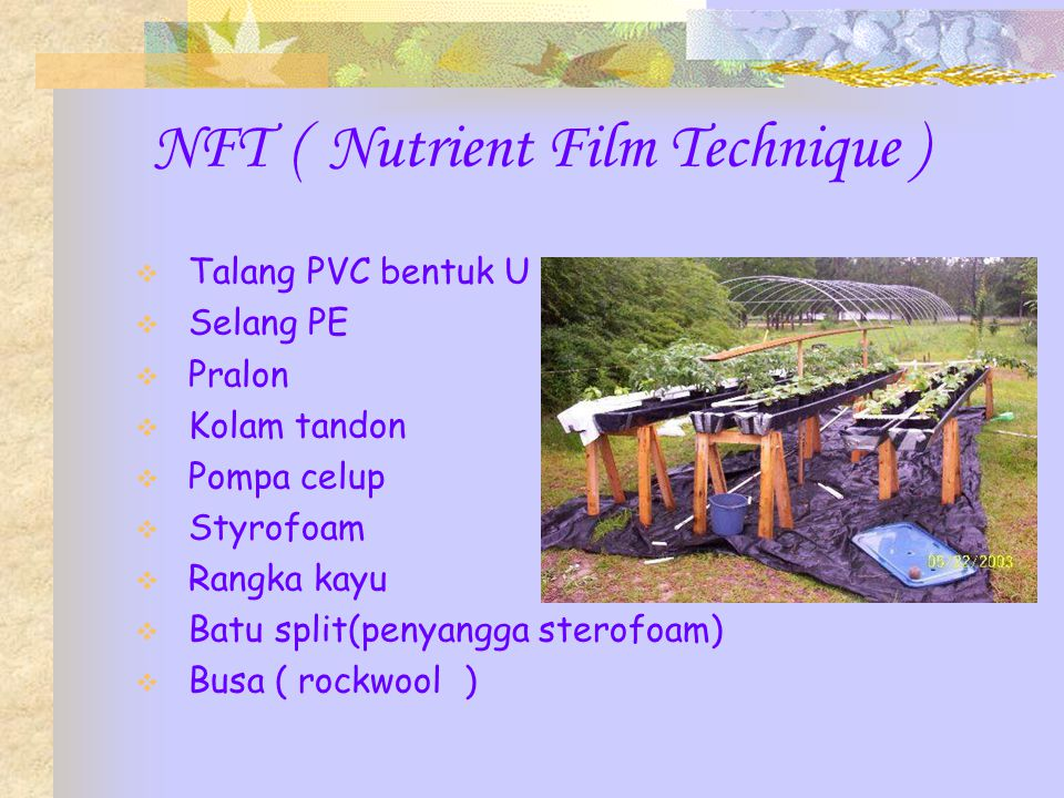 NFT ( Nutrient Film Technique )