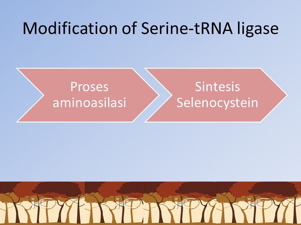 Modification of Serine-tRNA ligase