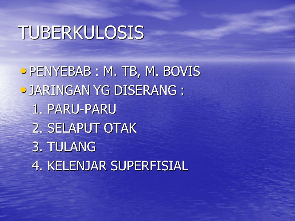 TUBERKULOSIS PENYEBAB : M. TB, M. BOVIS JARINGAN YG DISERANG :