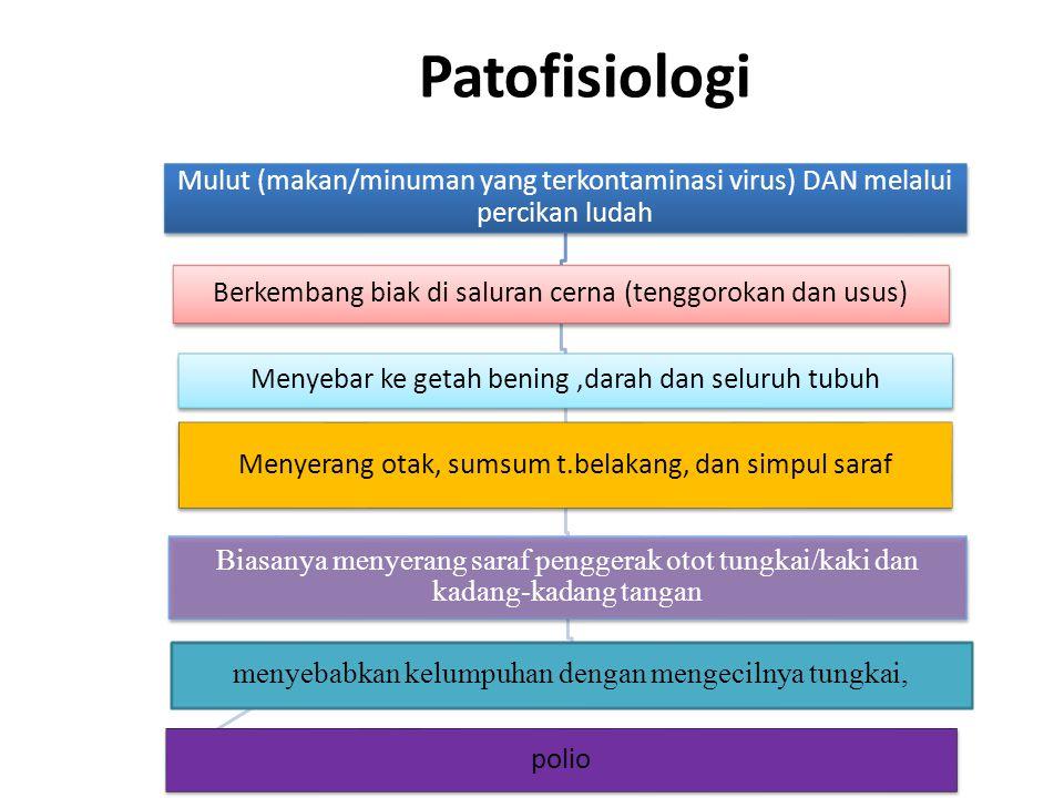 Patofisiologi Mulut (makan/minuman yang terkontaminasi virus) DAN melalui percikan ludah. Berkembang biak di saluran cerna (tenggorokan dan usus)