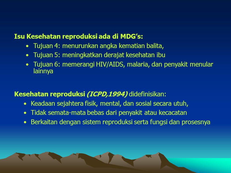 Isu Kesehatan reproduksi ada di MDG's: