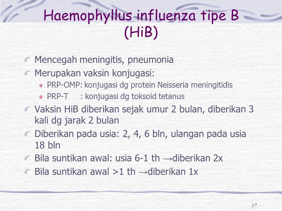 Haemophyllus influenza tipe B (HiB)