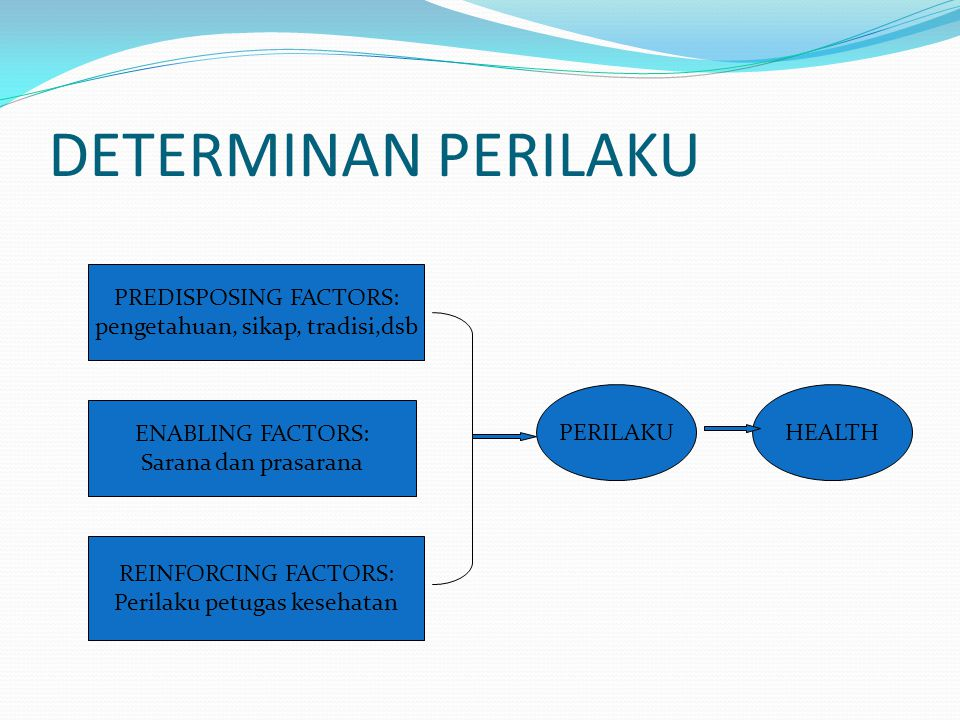 DETERMINAN PERILAKU PREDISPOSING FACTORS: