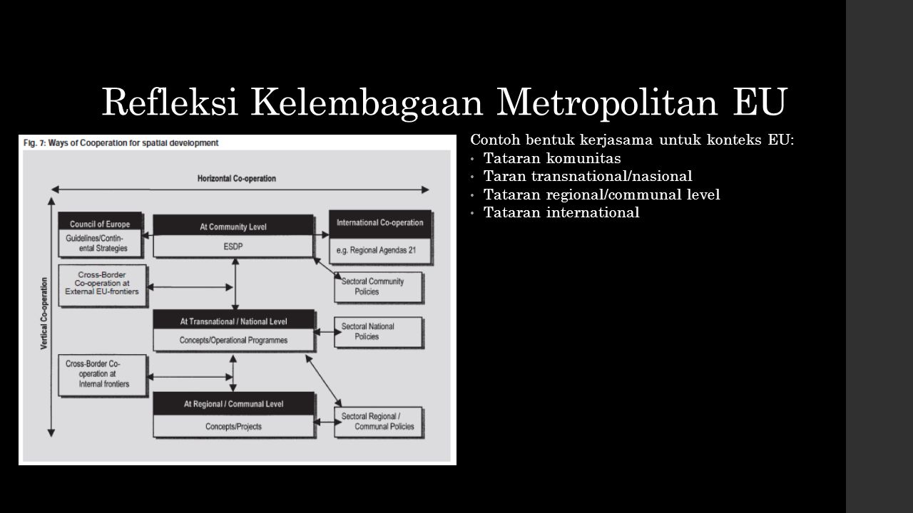 Refleksi Kelembagaan Metropolitan EU