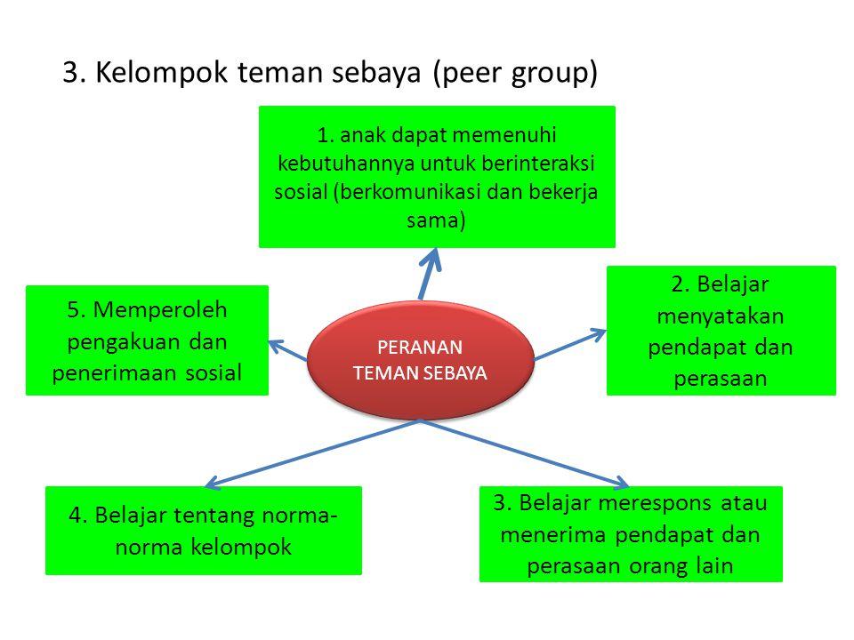 3. Kelompok teman sebaya (peer group)