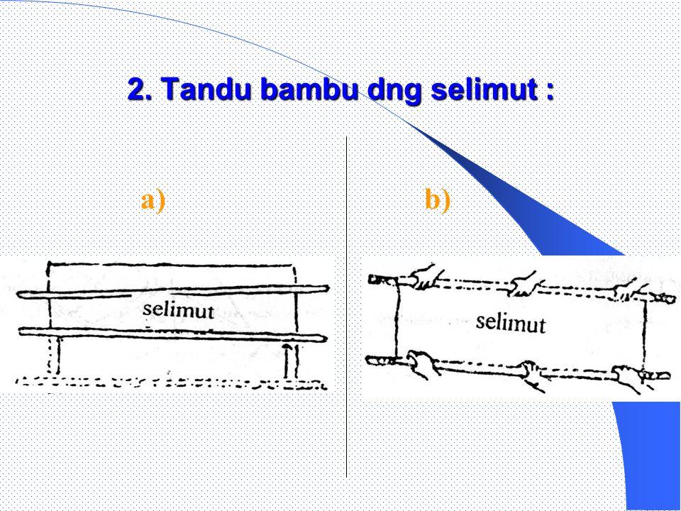 2. Tandu bambu dng selimut :