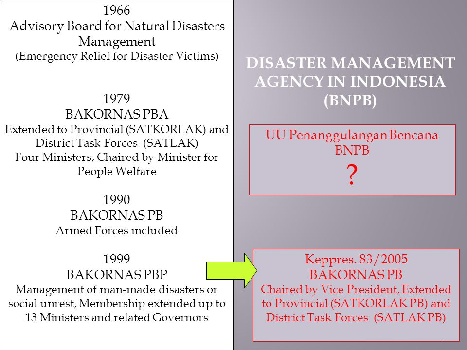 DISASTER MANAGEMENT AGENCY IN INDONESIA (BNPB)