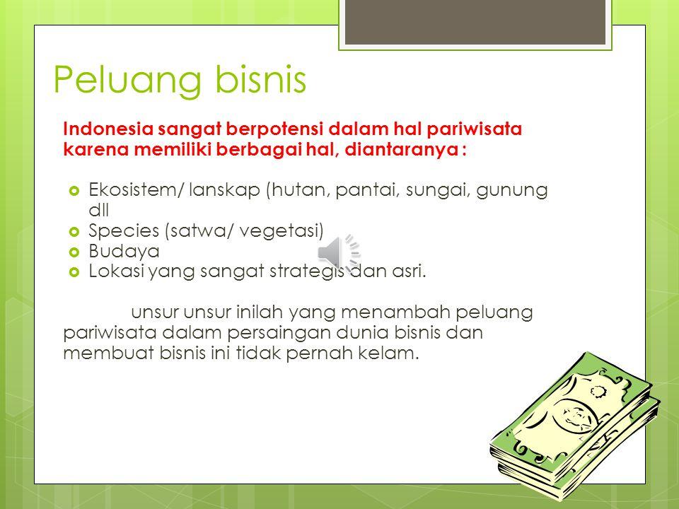 Peluang bisnis Indonesia sangat berpotensi dalam hal pariwisata karena memiliki berbagai hal, diantaranya :
